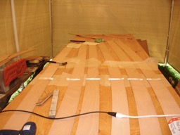 Construction began by gluing the hull panels to full length.